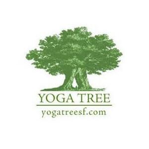 yoga_tree_logo2