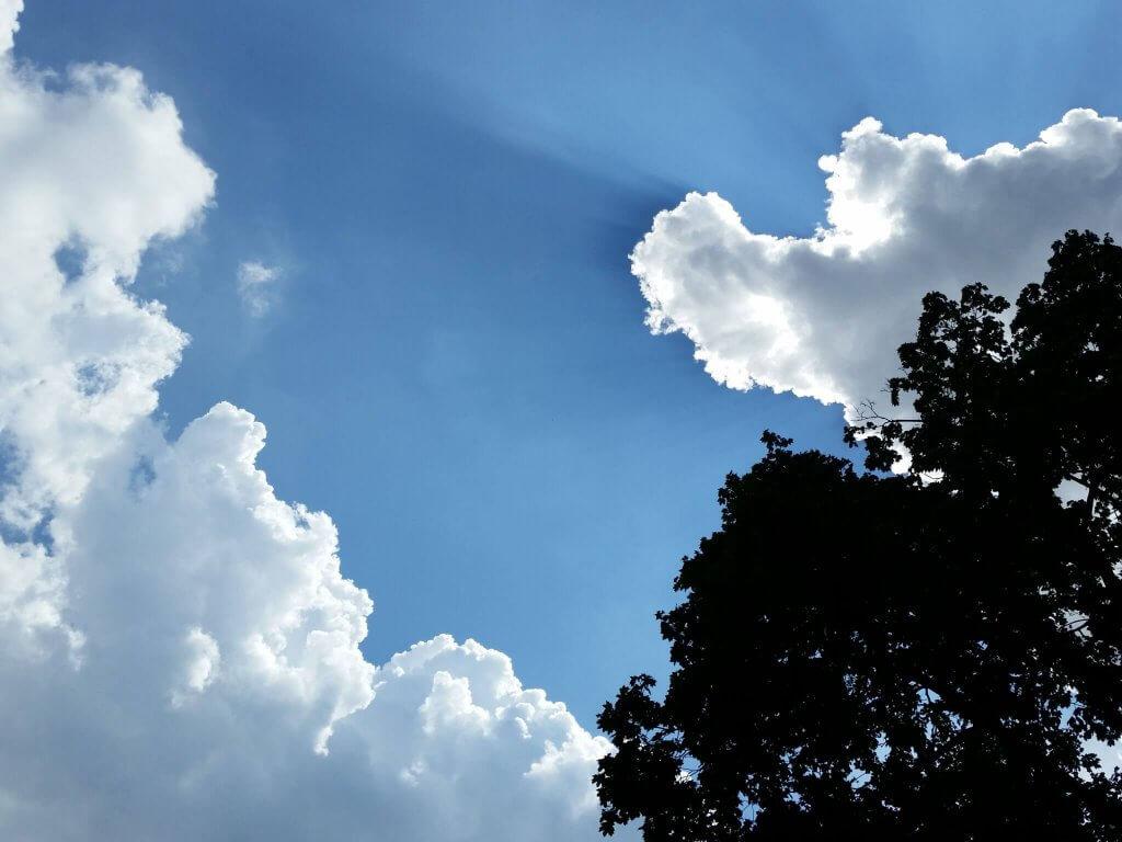 Vastness Sky